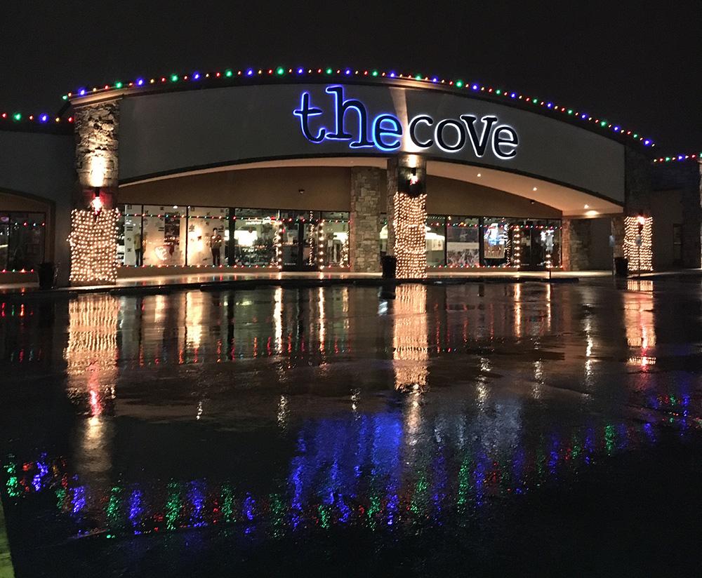 christmas light hanging business - Christmas Light Hanging Business