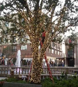Christmas Decorators Hang Lights