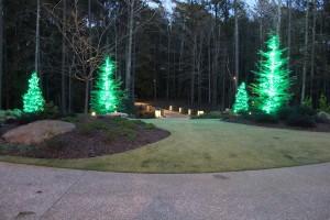 Company to install Christmas lights on Tree