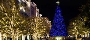 Commercial-Christmas-Light-Installation8