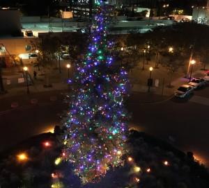 christmas-tree-lights-1