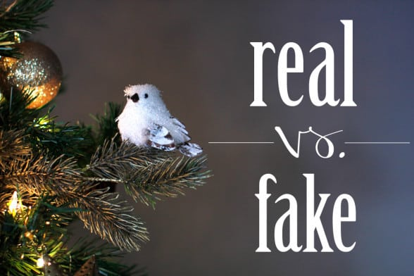 Real Vs Fake Christmas Tree
