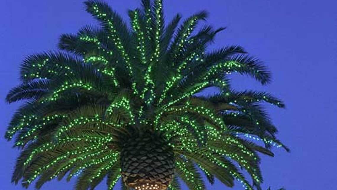 commercial Christmas light installation