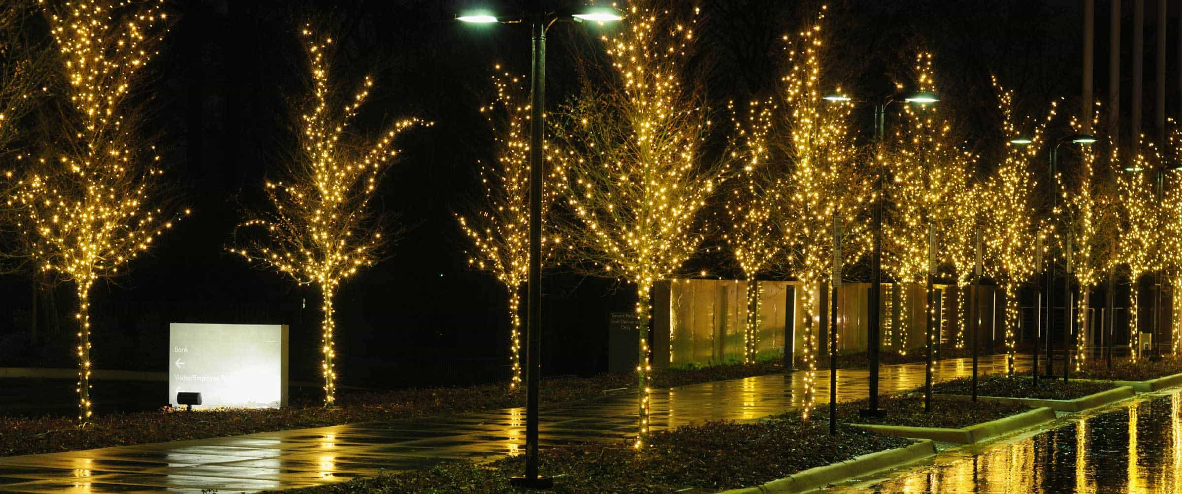 We Hang Christmas Lights Was Started In 1997 And Specialize Residential Commercial Light Installation Modesto Ca Seasonal Displays
