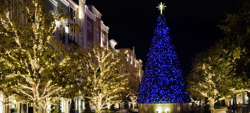 Commercial Christmas Lights.Commercial Christmas Tree Installation