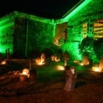 Halloween Lights Green