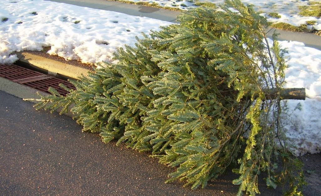 Tips for Taking Down Christmas Tree