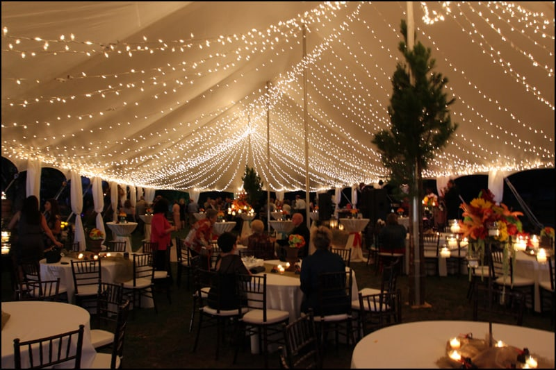 Popular Outdoor Wedding Curtain Lighting