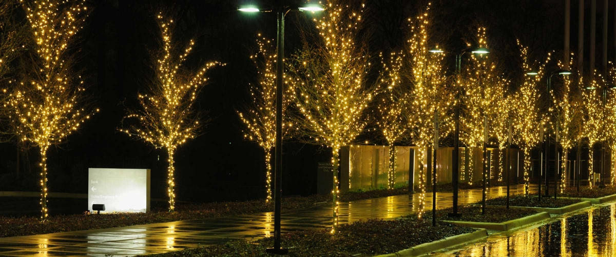 locations 1 commercial holiday lighting butler