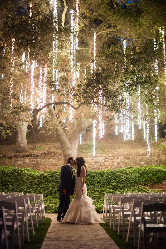 Lights on trees outside solar powered landscaping lights solar lights on trees outside with lights on trees outside aloadofball Choice Image