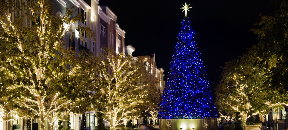 - Christmas Light Hanging Service, Professional Christmas Decorators