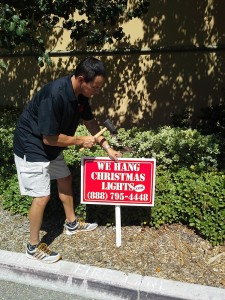 Marketing for Christmas Light Company