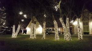 Christmas Decorating Company