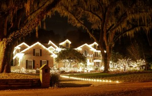 All white whimsical Christmas Lights
