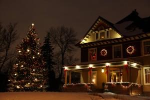 Christmas Light Installation Big Tree